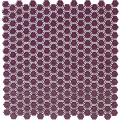 Simple Rimmed Hexagon Plum