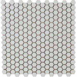 Simple Rimmed Hexagon Sage