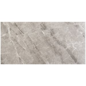 Close Out - Luna Nambia Grey Polished 24x48