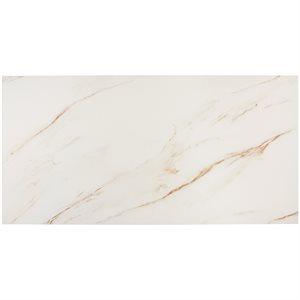 Everyday Marble Borghini Satin 24x48