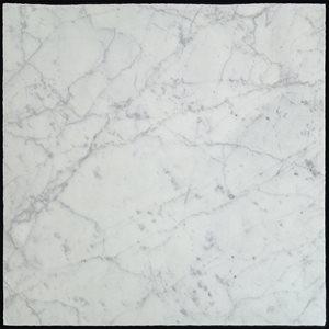 Close Out - Castlerock White Carrara 18x18 Roman Finish